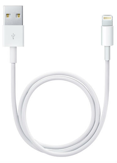 Apple Lightning to USB Cable, 0.5m